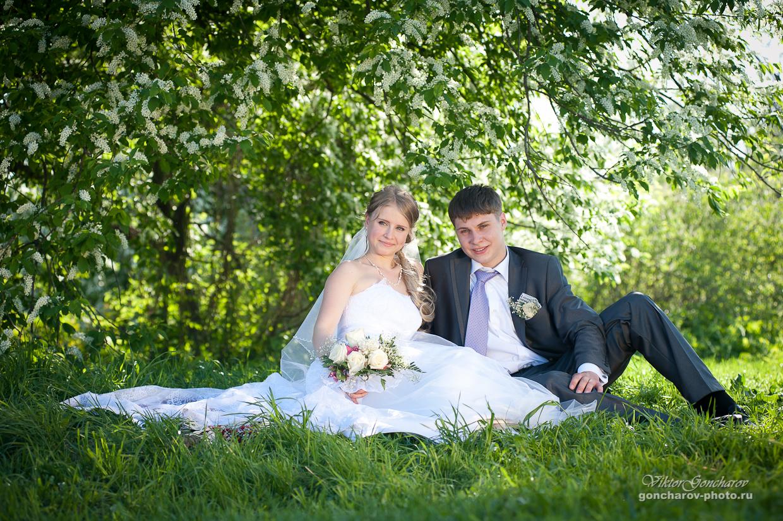 Свадебный фотограф в Туле Свадебная прогулка в Ясной поляне